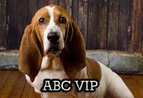 ABC VIP