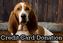 Credit Card Donation