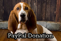 PayPal Donation Featured Thumbnail